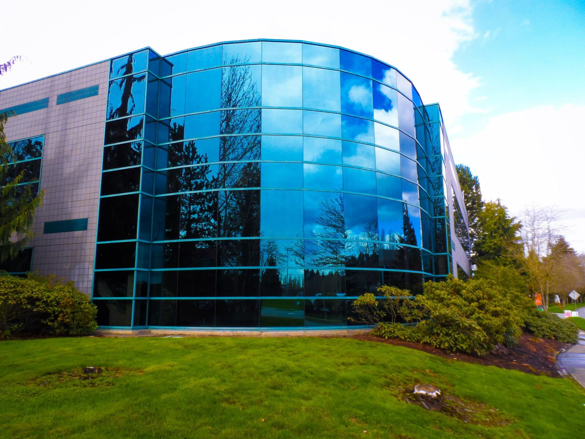 Reflective Window Tint for Office